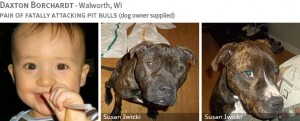 daxton-borchardt-2013-fatal-pit-bull-attack-photos