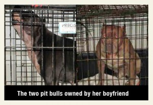 pit-bulls-that-killed-katherine-atkins