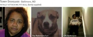 terry-douglass-2013-fatal-pit-bull-attack-photos