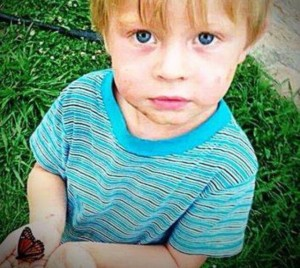 Levi Watson butterfly