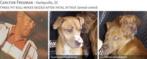 carlton-freeman-2013-fatal-pit-bull-attack-photos