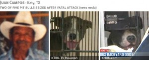juan-campos-2013-fatal-pit-bull-attack-photos