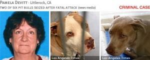 pamela-devitt-2013-fatal-pit-bull-attack-photos