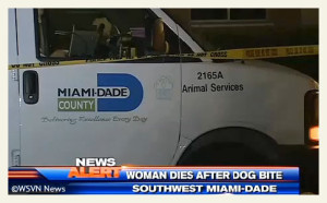 dogs-kill-elderly-woman-miami-dade