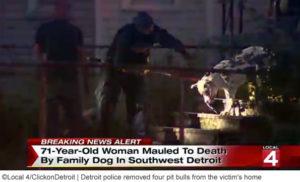 family-pit-bull-kills-detroit-woman